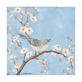 Blossom Bird I Giclee Print by Stephanie Marrott