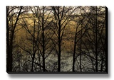 Three Imagenings Stretched Canvas Print by Britt Charles
