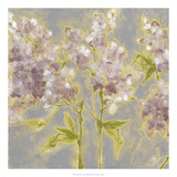 Ethereal Flowers I Premium Giclee Print by Jennifer Goldberger