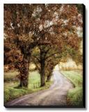 Walk Me Home Leinwand von Burt D.
