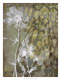 Dusty Garden II Premium Giclee Print by Jennifer Goldberger