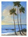 Tropical Breeze II Premium Giclee Print by Tim OToole