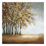Tree in Fall Premium Giclee Print by Christina Long