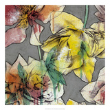 Graffiti Flowers I Premium Giclee Print by Jennifer Goldberger