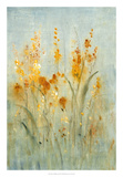 Spray of Wildflowers II Premium Giclee Print by Tim OToole
