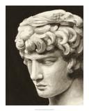 Roman Relic I Premium Giclee Print by Ethan Harper