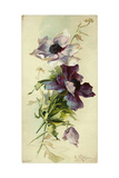 Watercolor-Style Purple Anemones Flowers on Texture Prints