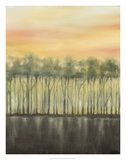 Dusk in Summer Premium Giclee Print by Jennifer Goldberger
