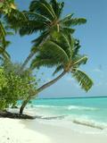 Maldives Beach Travel Holiday Giclée-tryk af  Wonderful Dream