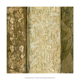 Earthen Textures X Premium Giclee Print by Beverly Crawford