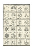 Line Art Flowers and Hexagon Composition Thumbnails Posters