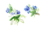 Bent Stems with Clusters of Forget-Me-Nots Print