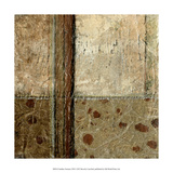Earthen Textures VIII Premium Giclee Print by Beverly Crawford