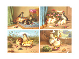 Ornery Animal Illustrations Premium Giclee Print