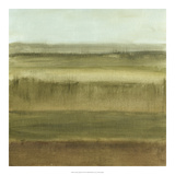 Abstract Meadow II Premium Giclee Print by Ethan Harper