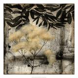 Nature's Breath III Premium Giclee Print by Jennifer Goldberger
