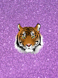 Tiger Cat With Purple Glitter Posters by  Wonderful Dream
