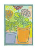 Pale Pink, Red, and Orange Potted Geraniums Prints