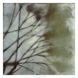 Diffuse Branches II Premium Giclee Print by Jennifer Goldberger