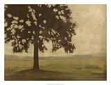Shenandoah Vista I Premium Giclee Print by Megan Meagher