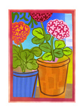 Bright Pink, Red, and Orange Potted Geraniums Print