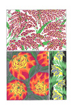 Multiple Bright, Bold Floral Print Patterns Posters