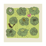 Cabbages in Garden with Butterfly and Bird Prints