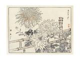 Stylized Flowers on Bamboo Terrace Prints