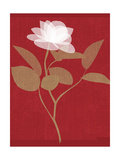 Stylized White Flower with Translucent Petals on Red Premium Giclee Print
