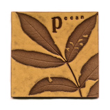 Tile with Impressed Leaves and Pecan Posters