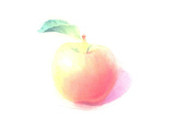 Single Apple with Leaf in Watercolor Shades Prints