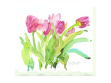Row of Blotchy Pink Watercolor Tulips Premium Giclee Print