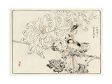 Stylized White Chrysanthemum with Perched Bird Prints
