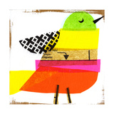 Collage of Colorful Bird Plakater