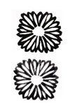 Two Black and White Stamped Daisies Posters