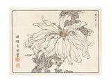 Close Up of Stylized Chrysanthemum Premium Giclee Print