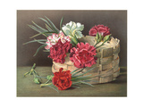 Painterly Carnations and Stems with Woven Basket Art