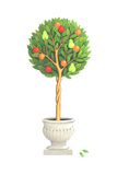 Topiary Tree with Pears, Apples, and Oranges in Flowerpot Art