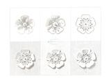 Flat and Dimensional Flower Design Diagrams Premium Giclee Print