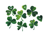 Painterly Shamrocks with Heart-Shaped Leaves Prints