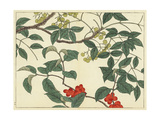 Leafy Branches with Berries and Fruit Prints
