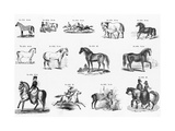 Black and White Stylized Horse Symbols Poster