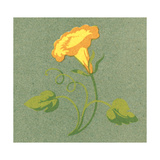 Close-Up of Portfolio View of Stylized Yellow Flower Art