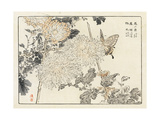 Butterfly with Stylized Japanese Flowers and Leaves Poster