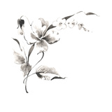 Gray Scale Sketch of Orchid Stretched Canvas Print