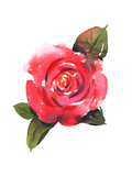 Painted Red Rose with Leaves Art