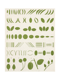Graphic Leaf Symbols Prints