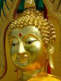 Golden Buddha Symbol Meditation Prints by  Wonderful Dream