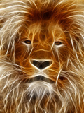 Abstract Lion Cat Animal Posters by  Wonderful Dream