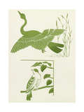 Graphic Birds with Stems Posters